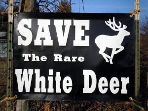 save_sign