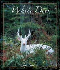 White Deer-White Deer; Ghosts of the Forest